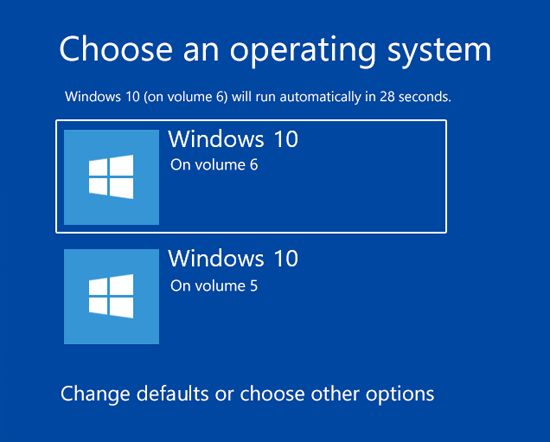 Windows 10 Dual Boot